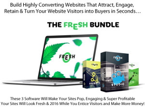 Download The Fresh Bundle Special Christmas Limited Offer