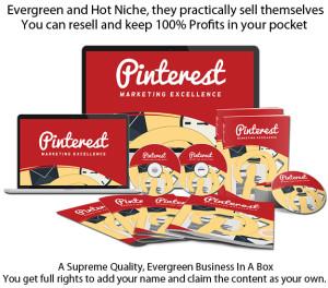 INSTANT Download Pinterest Marketing Excellence PLR