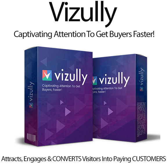 Vizully Software Pro Full Access Unlimited By Brett Ingram